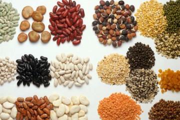 Máy xay bột đậu nành công nghiệp – Lựa chọn mới cho bạn